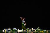 Images 2015 –Santa Clara University Department of Theatre & Dance