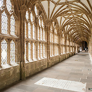 Cloisters of Wells Cathedral in Wells, Somerset, United Kingdom. Some of the building dates back to the 10th Century.