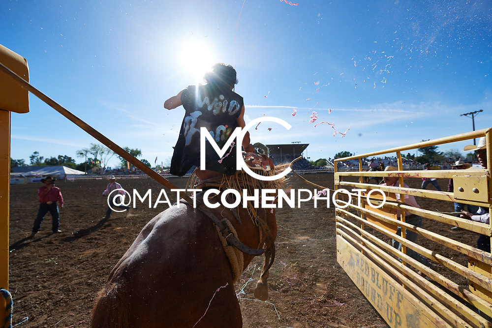 Dalan Duncan, Red Bluff 2019<br /> <br /> <br />   <br /> <br /> <br /> File shown may be an unedited low resolution version used as a proof only. All prints are 100% guaranteed for quality. Sizes 8x10+ come with a version for personal social media. I am currently not selling downloads for commercial/brand use.