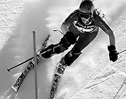 NEWS&GUIDE PHOTO / PRICE CHAMBERS<br /> Jackson senior Desiree Bridges eyes her next gate as she runs the slalom course at the Wyoming High School State Ski Meet on Saturday. She finished with a combined time of 1:50.72. Bridges won the All-State points race but Pinedale put an end to the Bronc girls nine-year run of state championships.