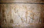 Cappadocia was a province of the Persian empire in what is now central Turkey. The cappadocians are shown wearing trouser suits and hates. They bring folded robes and a horse is identical to other Achaemenid representations.