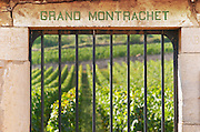 "Vineyard. Grand Montrachet, Domaine Jacques Prieur. ""Le Montrachet"" Grand Cru, Puligny Montrachet, Cote de Beaune, d'Or, Burgundy, France"
