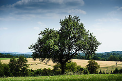 German landscape near the French village of Liederschiedt, Alsace.  Picture taken yards inside France looking into Germany.<br /> <br /> (c) Andrew Wilson | Edinburgh Elite media
