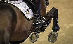 Ehning Marcus, (GER), Singular LS La Silla<br /> Longines FEI World Cup™ Jumping Final I<br /> Las Vegas 2015<br />  © Hippo Foto - Dirk Caremans<br /> 17/04/15