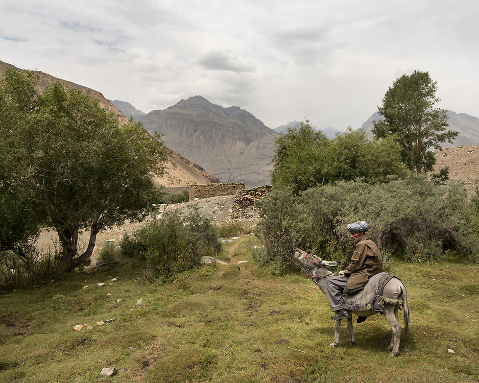 A man on a donkey.  trip up and down the pastures belonging to the village.<br /> The traditional life of the Wakhi people, in the Wakhan corridor, amongst the Pamir mountains.