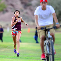 103114  Adron Gardner/Independent<br /> <br /> Ganado Hornet Daangoiina Haven sprints to the finish line in first place during the Arizona sectional cross country tournament in Holbrook Friday.