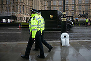 Extinction Rebellion activists having left sculptures by the artist Gray made out of ice outside Parliament in Westminster, February 4th 2019, Central London, United Kingdom. The pieces look like life jackets and are meant to represent both the climate and refugee crisis.