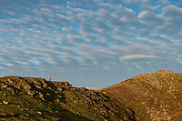 Female hiker hikes on ridge near summit of Tønsåsheia, Lofoten Islands, Norway
