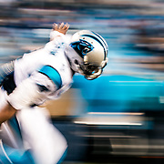 Panthers vs Cardinals - NFC Championship Game - Jan 24, 2016