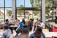 Student Cafeteria Overlooking Sculpture Garden