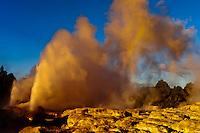 The 30 meter high Pohutu Geyser erupting, Te Puia (New Zealand Maori Arts & Crafts Institute), Whakarewarewa Thermal Valley, Rotorua, North Island, New Zealand.