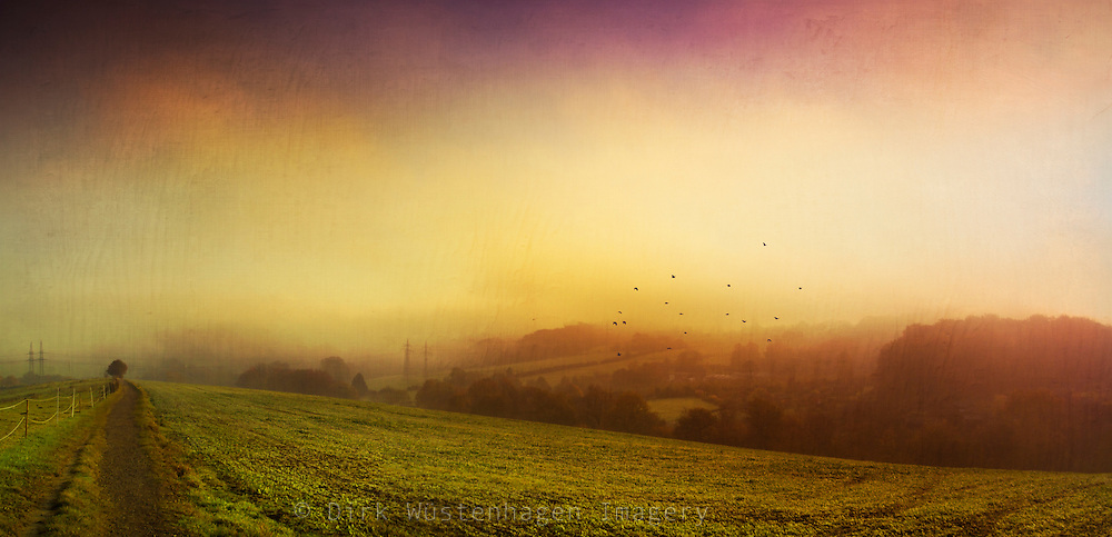 Panorama of a misty landscape at sunrise - texturized  photograph