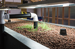 The Aquaponics tank in Toddmordon, Yorkshire, being prepared. Incredible Edible Farm