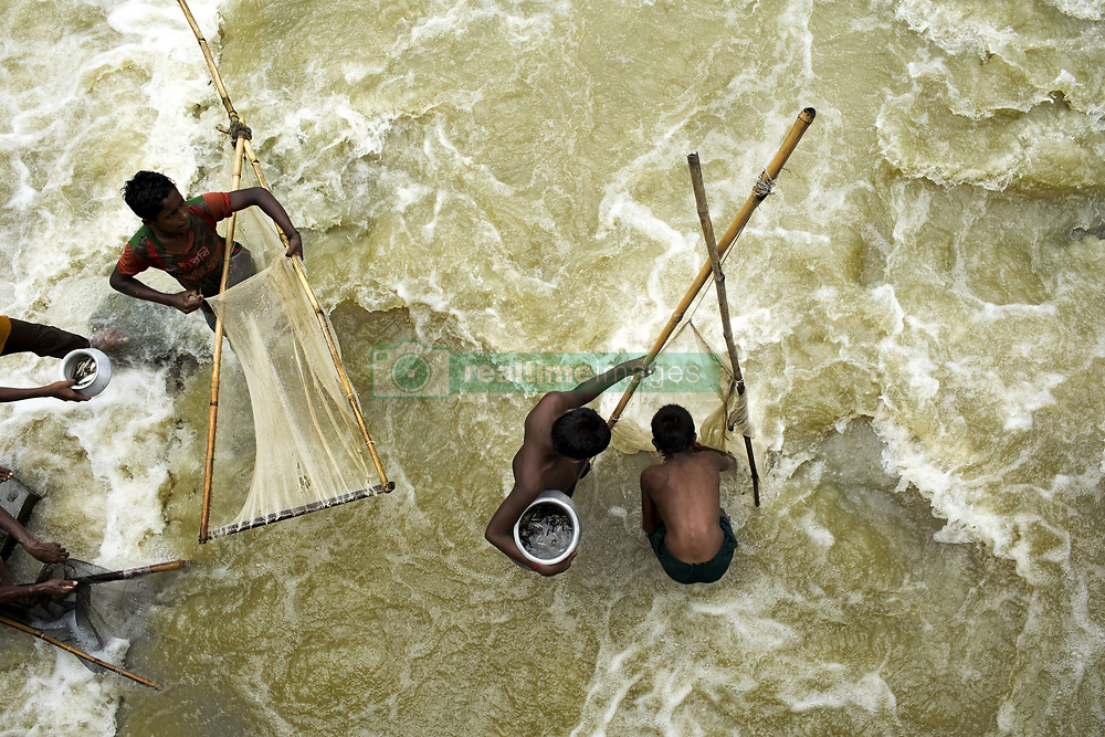 August 17, 2017 - Shariakandi, Bogra, Bangladesh - People catch fish with nets in a switch gate at Sariakandi, Bogra, Bangladesh 17 August 2017. According to authorities, floods caused by heavy rainfall lashing Bangladesh during the past week have left at least 56 people dead. Affected people are waiting to get more relief as they are in shortage of food and drinking water in the shelter centers. (Credit Image: © Km Asad/NurPhoto via ZUMA Press)