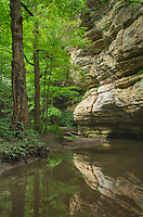 Kaskaskia Canyon, Starved Rock State Park, LaSalle County, Illinois
