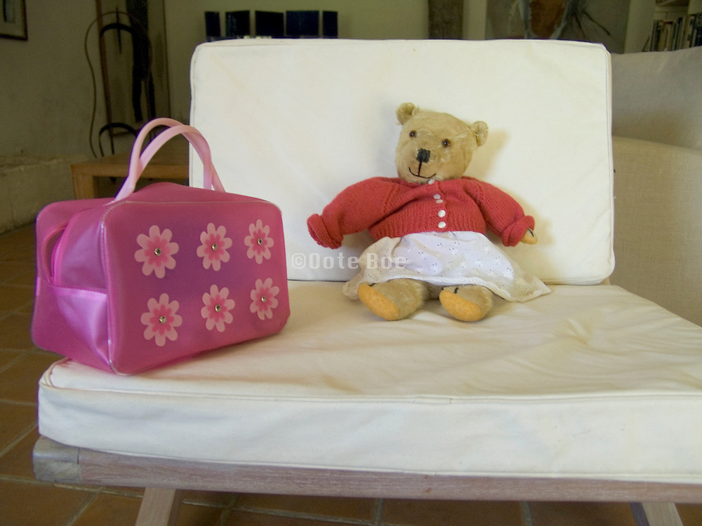 teddy bear with a child?s lady bag