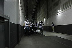 Philadelphia Eagles are led by  Brent Celek #87,  LeSean McCoy #25,  Michael Vick #7 and DeSean Jackson #10 as they walk through the tunnel from the locker room to the field before the NFL football game between the Philadelphia Eagles and the Arizona Cardinals in Glendale, Ariz on Sunday, September 23rd 2012. The Cardinals won 27-6. (Photo By Brian Garfinkel)