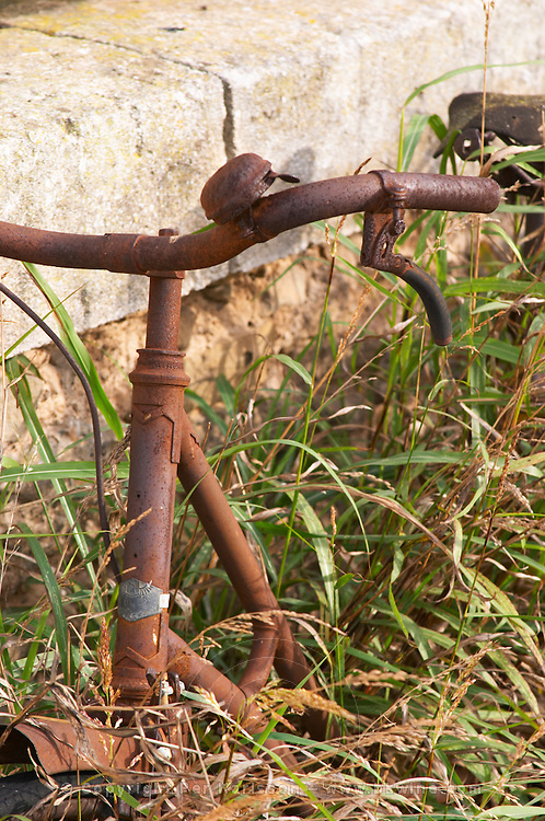 Chateau Mansenoble. In Moux. Les Corbieres. Languedoc. In the garden. A rusty old abandoned bicycle overgrown with grass and weed. France. Europe.