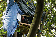 An anti-HS2 tree protector looks out from a makeshift tree house about 60 feet above ground during evictions by National Eviction Team bailiffs working on behalf of HS2 Ltd from a wildlife protection camp in the ancient woodland which inspired Roald Dahl's Fantastic Mr Fox at Jones' Hill Wood on 1 October 2020 in Aylesbury Vale, United Kingdom. Around 40 environmental activists and local residents, some of whom in tree houses, were present during the evictions at Jones' Hill Wood which had served as one of several protest camps set up along the route of the £106bn HS2 high-speed rail link in order to resist the controversial infrastructure project.