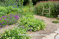 63821-19802 Flower garden with path, arbor, fence, Raspberry Wine Monarda, Luscious Lemonade Lantana, Luscious Grape Lantana, Geranium IL