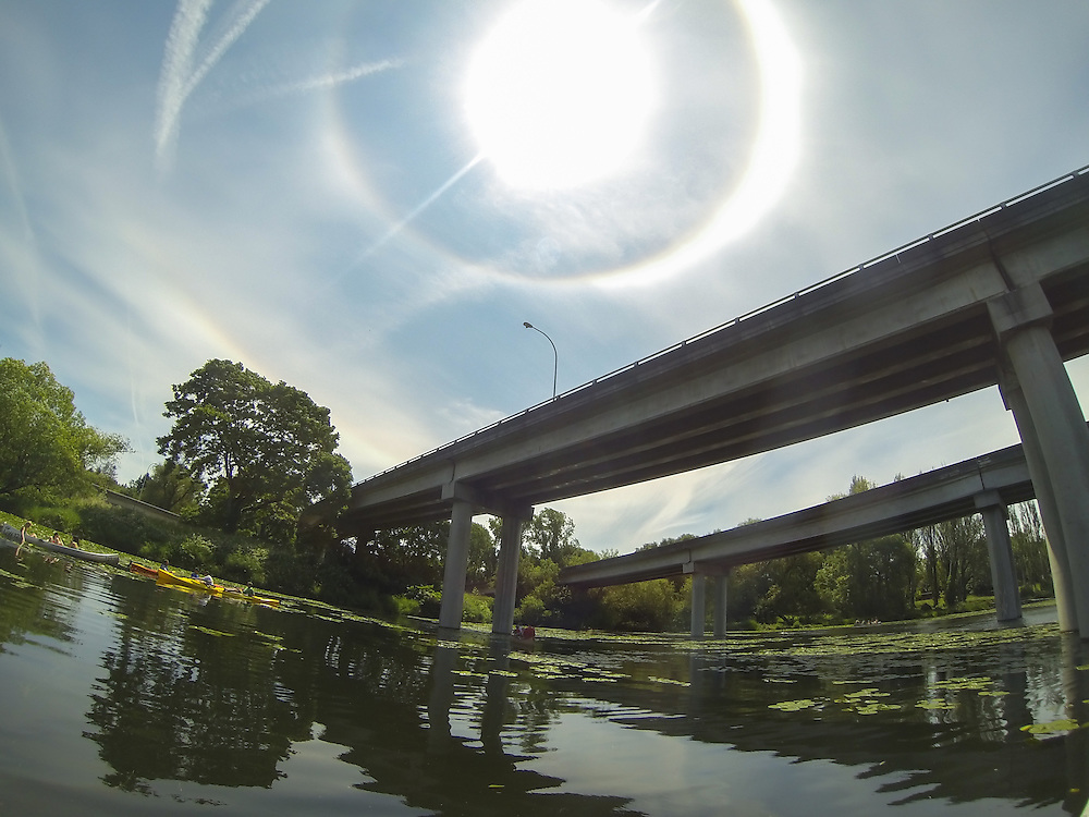 An sun halo, also known as a nimbus, circles the sun over the University of Washington Arboretum, Seattle, Washington on Saturday, June 15. The optical phenomenon is produced by ice crystals in the upper troposphere, reflecting and refracting sunlight 3-6 miles above Earth.  Photo by William Drumm, 2013.