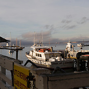 Scenes from the wharf in Monterey, California along the Central Coast.