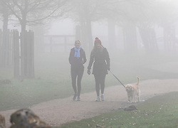 © Licensed to London News Pictures. 05/02/2020. London, UK. Dog walkers enjoy the fog in Richmond Park. A foggy start for cyclists and drivers this morning in Richmond Park as weather experts predict more fog followed by high winds and heavy rain for the weekend. Photo credit: Alex Lentati/LNP
