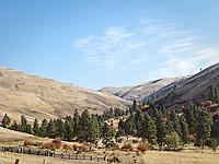 Ranchland in rural Garfield County, Blue Mounatins, WA, USA