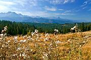 Jesienny widok na Tatry z Głodówki
