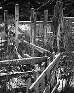 Fencing detail on a disused croft in Ardmair Bay, Scotland.
