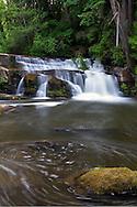 A waterfall along the Millstone River at Bowen Park in Nanaimo, British Columbia, Canada.