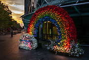 A flower rainbow at dawn showing support for the NHS staff outside UCL hospital during the coronavirus pandemic on the 10th May 2020 in London, United Kingdom. Researchers at University College London warn the risk of death if you have an underlying health conditions is five times higher so the team created the coronavirus calculator to let individuals see how at risk they are. Rainbows are used as a symbol of peace and hope as they often appear when the sun follows a heavy rainfall. They serve to remind us that there is hope and light to follow even after dark times. The current trend appears to have started in Italy but has also been adopted by the US, Canada and Spain, where people have adorned their windows and balconies with colourful pictures.