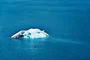 Iceberg, Disenchantment Bay, Alaska, USA.