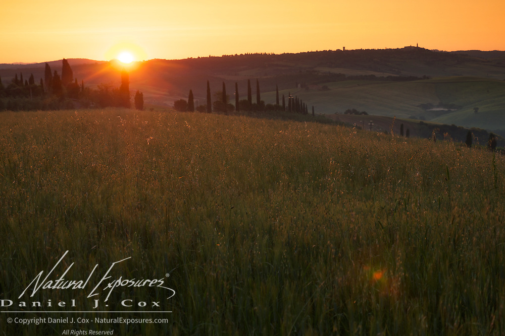 Sunrise over the beautiful rolling countryside of Tuscany, Italy