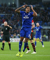 Cardiff City's Nathaniel Mendez-Laing reacts after a shot during the Premier League match at the Cardiff City Stadium, Cardiff.