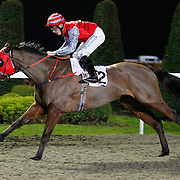 Picansort and S W Kelly winning the 6.00 race