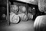 30/08/1963<br />
