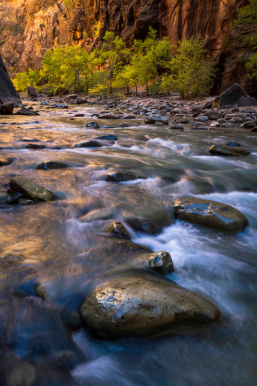 The Virgin River flows onwards and over the numerous boulders in the riverbed as the first light of day illuminates the canyon walls in The Narrows of Zion National Park.