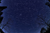 Winter Nighttime Sky Over New Jersey. Composite star trail image (02:44-02:59) taken with a Nikon D850 camera and 8-15 mm fisheye lens (ISO 800, 15 mm, f/8, 30 sec). Raw images processed with Capture One Pro and the composite created with Photoshop CC (statistics, maximum).