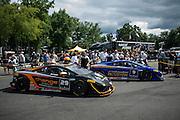 August 22-24, 2014: Virginia International Raceway. #29 Kevin Conway, Change Racing, Lamborghini of the Carolinas , #9 Kevin O'Connell, Rick Ware Racing, Lamborghini of Toronto