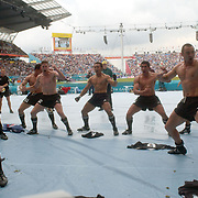 New Zealand celebrate victory