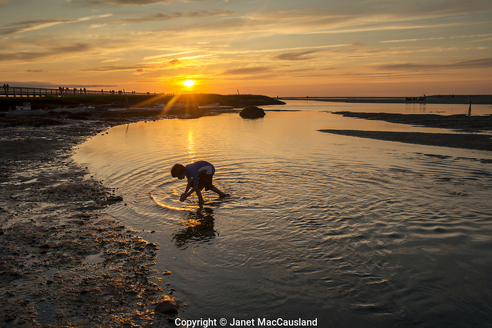 This beautiful Cape Cod scene reminded me of my own childhood summers catching minnows and crabs in a shallow tidal creek.