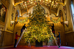 Windsor, UK. 30th November, 2018. The State Apartments at Windsor Castle have been decorated with glittering Christmas trees and twinkling lights for Christmas. Seen here in St George's Hall a striking 20ft Nordmann Fir tree from Windsor Great Park dressed in gold.
