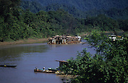 LOG RAFTS, MALAYSIA. Sarawak, Borneo, South East Asia. Log rafts on river, with tugboat. Tropical rainforest and one of the world's richest, oldest eco-systems, flora and fauna, under threat from development, logging and deforestation. Home to indigenous Dayak native tribal peoples, farming by slash and burn cultivation, fishing and hunting wild boar. Home to the Penan, traditional nomadic hunter-gatherers, of whom only one thousand survive, eating roots, and hunting wild animals with blowpipes. Animists, Christians, they still practice traditional medicine from herbs and plants. Native people have mounted protests and blockades against logging concessions, many have been arrested and imprisoned.