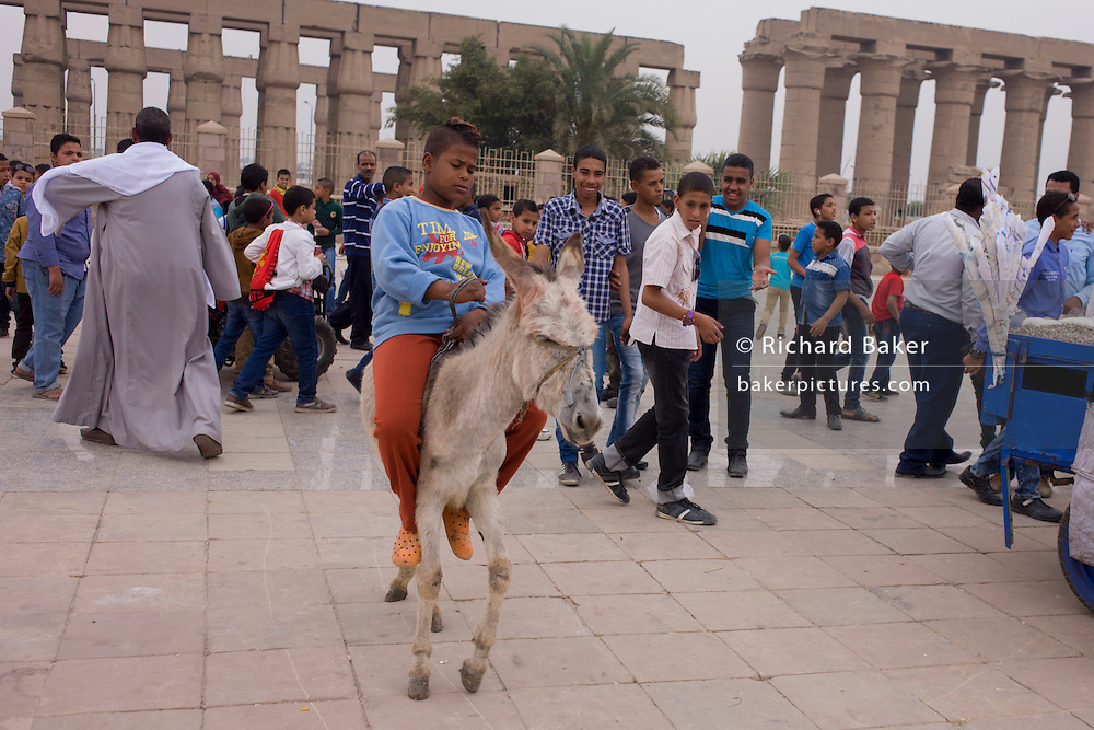 Egyptian youths enjoy the spectacle of a boy trying to control a mule in front of the ancient Egyptian columns of Luxor Temple, Luxor, Nile Valley, Egypt. The temple behind was built by Amenhotep III, completed by Tutankhamun then added to by Rameses II. Towards the rear is a granite shrine dedicated to Alexander the Great and in another part, was a Roman encampment. The temple has been in almost continuous use as a place of worship right up to the present day.