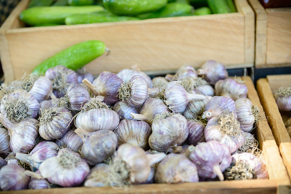 Garlic bulbs for sale at Hobart's Salamanca Market