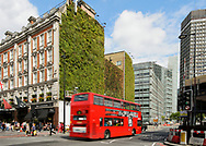 Green wall, Victoria, London. This wall captures rainfall and releases it slowly regulating temperature and decreasing urban run off.