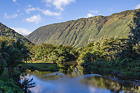 Waipio Valley. in the Hamakua District of the Big Island.  Waipio means curved water in the Hawaiian language.  It was the residence of many early Hawaiian kings - the large nioi tree was the location of the grass palace of the ancient kings.   A steep road leads down into the valley from a lookout point - one of the steepest roads in the world.  Several waterfalls pour into the valley to feed the river.  A foot trail called Muliwai Trail leads down a steep path to the Waimanu Valley.  The valley was the site of the final scene in the science fiction film Waterworld where the main characters finally found dry land.