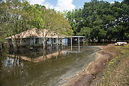 Sept. 2, 2016, The Ridge Road Community in Asumption Parish,following the 1000 year flood. The area was flooded by backflow waters. The standing water trapped took almost   30 days to drain. The local government made cuts in a road to give the water a way to escape from the area to help the water drain.