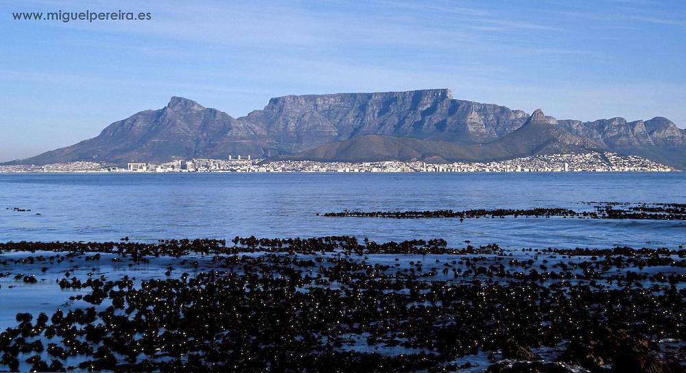 Cape Town view from Robben Island (South Africa).<br /> <br /> Vista de Ciudad del Cabo desde Robben Island (Sudáfrica).